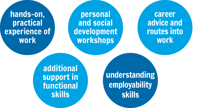 qualifications apprenticeships skills work life employability personal social development